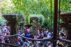 Disney Crowds Waiting in Line. Crowds queue up in line for their turn at Disneyland Indiana Jones amusement park ride on hot day in summer royalty free stock photos
