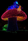 Disney Electrical Parade Royalty Free Stock Image