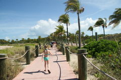Walkway to Family Beach on Castaway Cay. Walkway to the family beach on Castaway Cay Royalty Free Stock Images