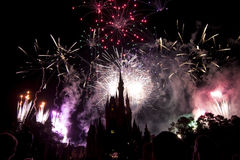 Disney fireworks Royalty Free Stock Image