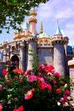 Disney Kopciuszek kasztel w wiosna kwiatach Zdjęcia Royalty Free