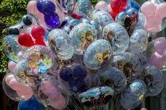 Disney Orlando ballonger Royaltyfri Fotografi