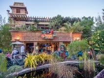 Disney Rainforestkafé Royaltyfri Fotografi