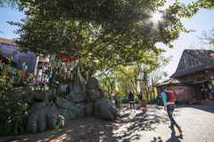 Disney's Animal Kingdom Stock Images