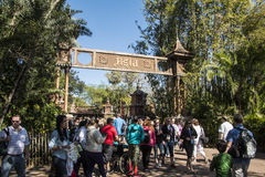 Disney's Animal Kingdom Stock Image