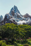 Disney's Animal Kingdom, Everest ride, Orlando Florida. Royalty Free Stock Images