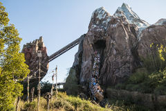 Disney's Animal Kingdom. Expedition Everest coaster - Orlando/FL - USA