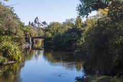 Disney's Animal Kingdom royalty free stock photography