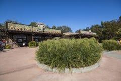 Disney's Animal Kingdom stock photos
