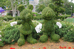 Disney's Mickey and Minnie Topiaries. Topiary of Mickey Mouse and Minnie Mouse on the grounds of Walt Disney's Magic Kingdom in Florida Royalty Free Stock Image