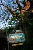 Disney värld Kilimanjaro Safari Animal Kingdom Arkivfoto