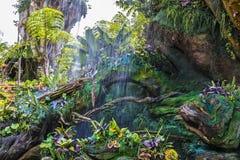 Disney värld Orlando Florida Animal Kingdom Pandora Pandora Arkivbilder
