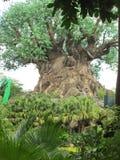 Disney-Wereld stock afbeelding
