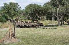 Disney-Wereld Kilimanjaro Safari Animal Kindom royalty-vrije stock foto