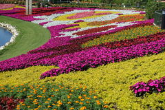 Disney World Epcot International Flower and Garden Festival Stock Photos