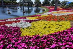 Disney World Epcot International Flower and Garden Festival Royalty Free Stock Photo
