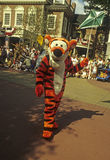 Disney World Magic Kingdom Parade- Tigger royalty free stock images