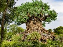 Disney world Orlando Florida animal kingdom tree of life. Wood carvings of animals and nature on the tree of life at animal kingdom at Disney world in orlando royalty free stock photo