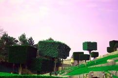 disneyland foto de stock