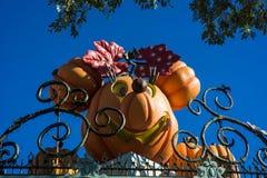 Disneyland Halloween Decor Minnie Mouse royalty-vrije stock afbeeldingen