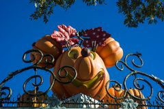 Disneyland Halloween Decor Minnie Mouse. Disneyland decorated for Halloween. Entrance gates decorated with pumpkin heads of famous characters royalty free stock images
