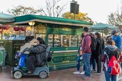Disneyland Resort nöjesfält i Anaheim, Kalifornien royaltyfri fotografi