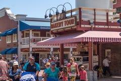 Disneyland rozrywki park, Anaheim, Kalifornia, usa Wesoło rodzinni wakacje Obrazy Stock