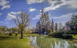 disneyland tokyo royaltyfri foto