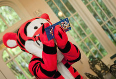 Disneys magisches Königreich Lizenzfreies Stockbild