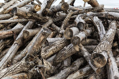 Disorderly piled old firewood Royalty Free Stock Photos