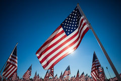 A dispaly of American flags with a sky background Royalty Free Stock Photos