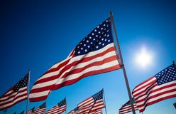 A dispaly of American flags with a sky background Stock Photos