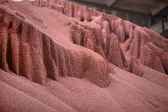 Disparado de produto químico misturado, grânulo artificiais do adubo vegetal do nitrogênio na fábrica Foto de Stock
