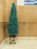 Disparado de uma árvore de Natal fotografia de stock royalty free