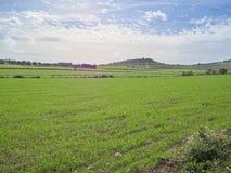 Disparado de uma paisagem rural em um dia ensolarado imagem de stock