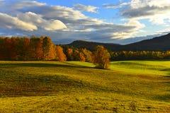 Disparado do prado de Vermont no outono imagens de stock