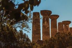 Disparado do templo de Hercules Imagem de Stock