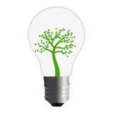 Disparaissent l'ampoule verte Photographie stock libre de droits