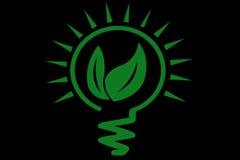 Disparaissent l'ampoule verte Photo stock