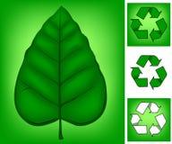 Disparaissent le vert Images stock