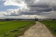 Disparo al campo a la granja y a las nubes fotografía de archivo libre de regalías