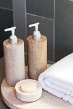 Dispensers, soap and towel Royalty Free Stock Photography