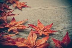 dispersion de feuilles d'érable sur le fond en bois de texture Image libre de droits