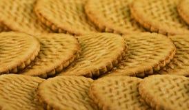 Dispersione dei biscotti del latte dolce Fotografia Stock