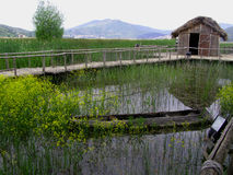 Dispilio Ecomuseum na mola imagens de stock royalty free