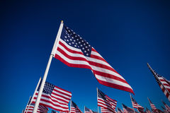 A display of American flags with a sky background Stock Photos