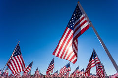 A display of American flags with a sky background Royalty Free Stock Photo