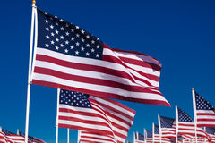 A display of American flags with a sky background Royalty Free Stock Photography