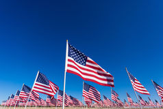 A display of American flags with a sky background Royalty Free Stock Image