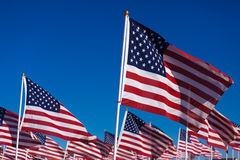 A display of American flags with a sky background Stock Images
